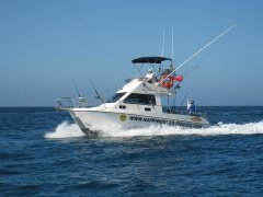 fishing-charter-boat-1.jpg